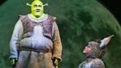 Brian d'Arcy Jamesas Shrek andDaniel Breaker as Donkey in Shrek.