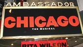 Rita Wilson opens in Chicago - marquee