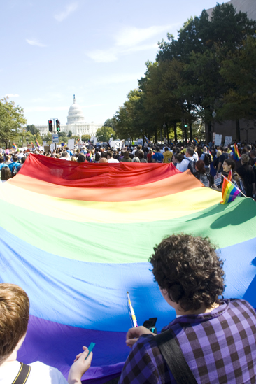 Hair at the National Equality March - Rainbow flag