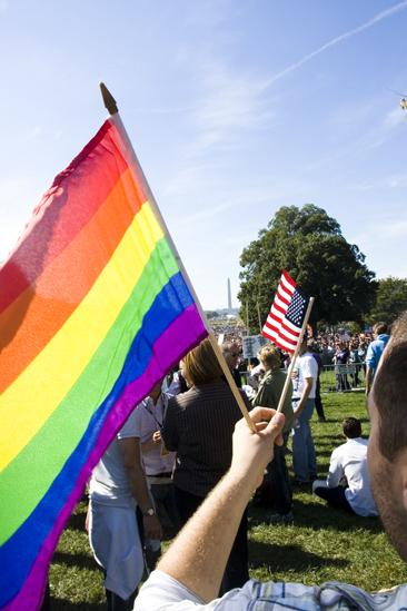 Hair at the National Equality March - Double flags