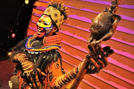Lion King Exhibit- Rafiki Costume