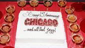 Chicago 13th Anniversary – cake