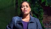 Liza Colon-Zayas as Odessa Ortiz, Armando Riesco as Elliot Ortiz, Bill Heck as Fountainhead, Frankie Faison as Chutes & Ladders and Sue Jean Kim as Orangutan in Water by the Spoonful.