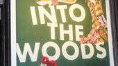 Into the Woods - Opening - 1/15 -