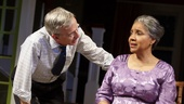 Robert Joy as Dr. Anderson and Phylicia Rashad as Shelah in Head of Passes.